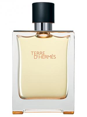 TerreD'Hermes Fragrantica