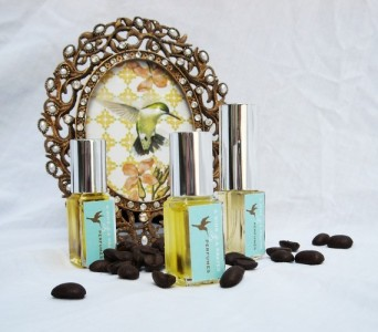 A Wing & A Prayer Mini Sampler