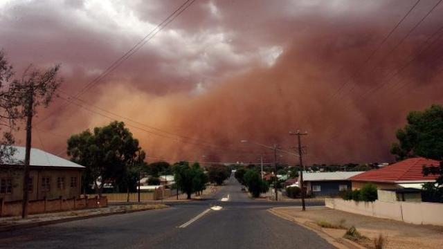 Dust Storm DailyTelegraph