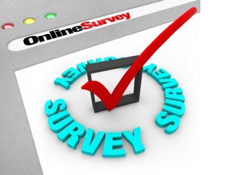 Survey AlpICT