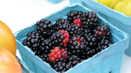 BlackBerries MorgueFile